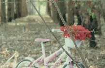A Bicicleta – Ayam Ubráis Barco
